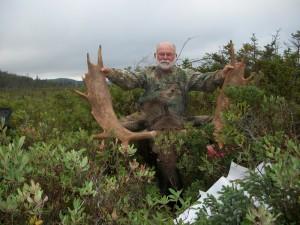 Successful moose hunt newfoundland